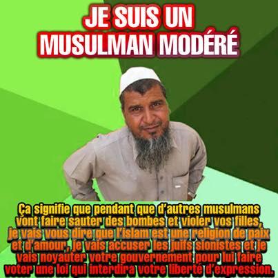 Musulmans modérés et islamistes