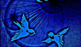 U – L'islam est-il une religion pacifique (Cf. Coran 2.256 ; 50.45) ?