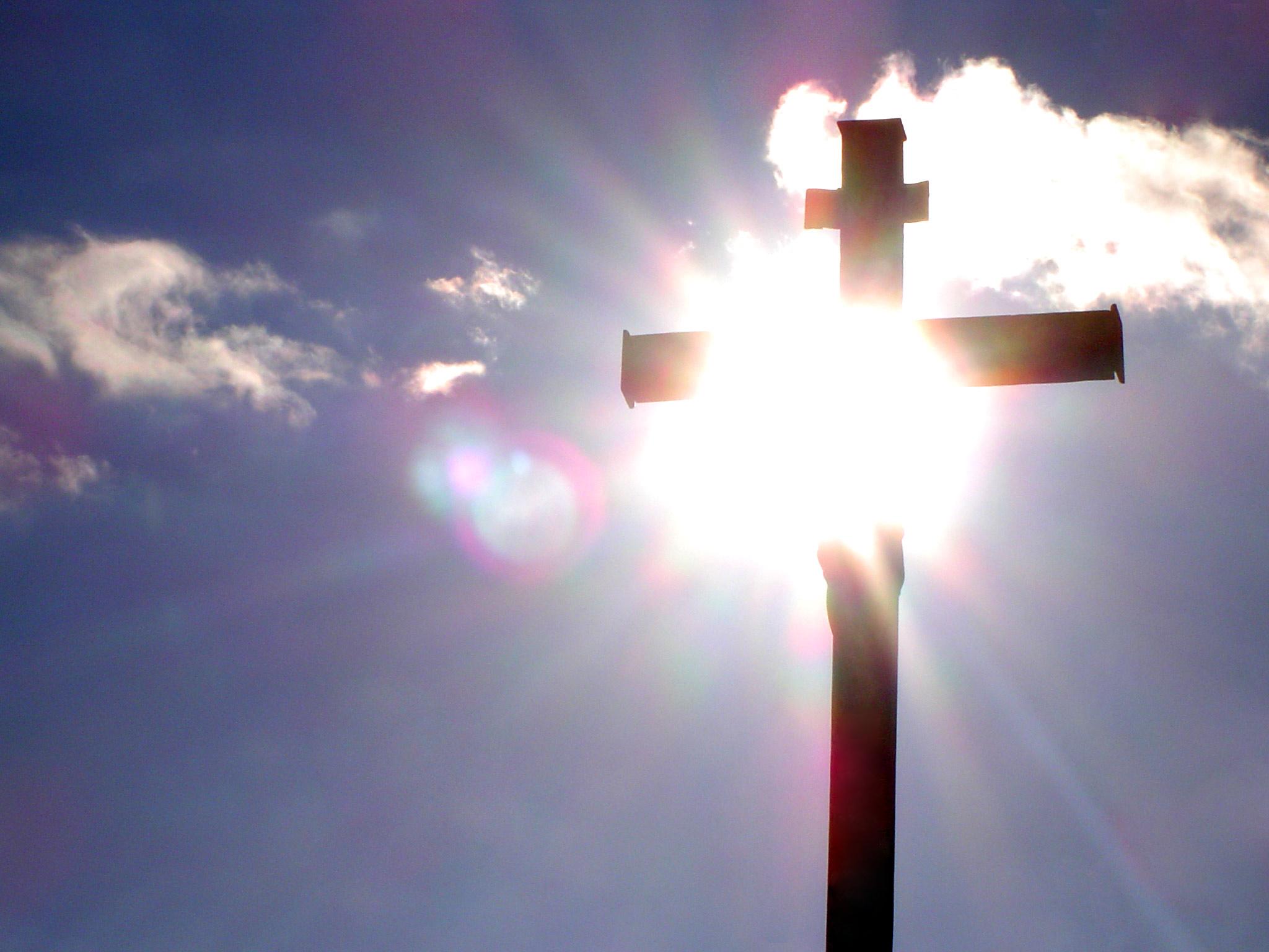 L'Évangile de la souffrance, Vidéo n° 295