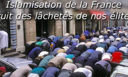 Un jour vient où les urnes électorales seront les urnes des cendres de la France