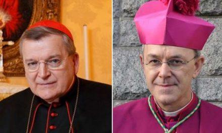 Du synode sur l'Amazonie et d'une clarification au sujet de la fidélité au Souverain Pontife