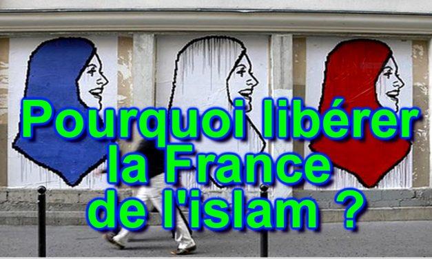 Pourquoi et comment libérer la France de l'islam ?