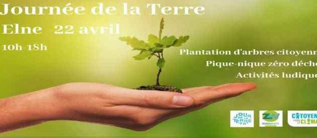 Planter des arbres, contraire ou non à l'Islam ?