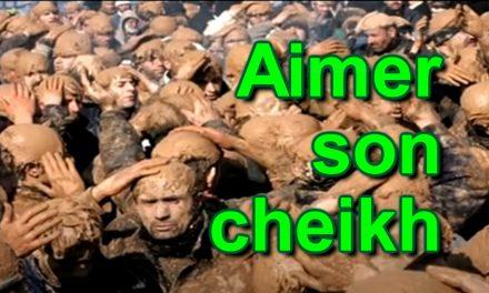Aimer son cheikh