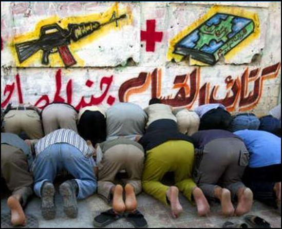 islam z